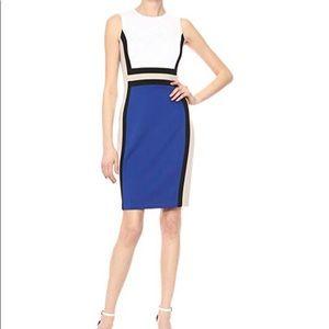 Calvin Klein Blue White & Tan sheath Dress- size 4
